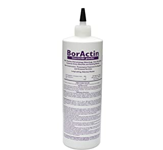 Rockwell Labs BAIP001 BorActin Insect Dust Insecticide, 1 lb. White