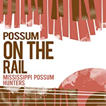 possum on a rail