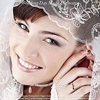 Best ave maria wedding Reviews
