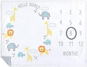 Hudson Baby Unisex Baby Monthly Milestone Blankets, Hello World, 35x46 inches