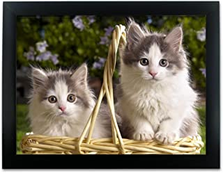 BANBERRY DESIGNS Cat Picture - Kittens in a Basket Poster - Wall Decor for Kids Room - Black Framed Picture Artwork - 3D Holographic Wall Art