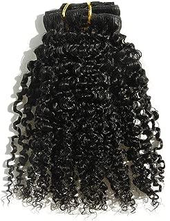 "Young Hair 100% Brazilian Virgin Human Hair 3B 3C Kinky Curly Clip In Clip On Hair Extenstion(3B-3C, 20"")"