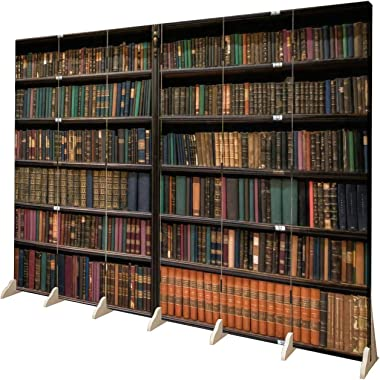 APED DECOR Wood Screen Room Divider The Portuguese Royal Library RJ Folding Screen Canvas Privacy Partition Panels Dual-Sided