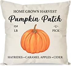 PANDICORN Farmhouse Fall Pillow Covers 18x18 for Fall Decor, Autumn Pumpkin Patch Thanksgiving Throw Pillows Cases for Fall Decorations Couch Outdoor Porch Bench