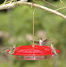 product image for Aspects HummZinger Excel Hanging Hummingbird Feeder with Built in Ant Moat - Item 143