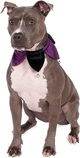 Rubie's Costume Velvet Jester Pet Clown Collar