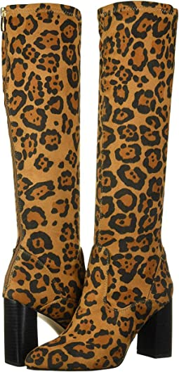 Leopard Stretch
