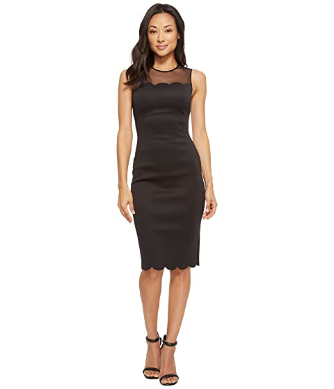 ec8edf1ff Ted Baker Clowva Scallop Mesh Overlay Bodycon Dress at Zappos.com