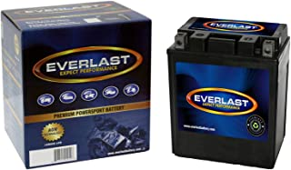 EverLast CTX14AHL-BS 12V AGM Battery (Fresh Pack, Maintenance-Free Battery with Acid 6-Pack Bottle -5 1/4 L X 3 1/2 W X 6 1/2 H)