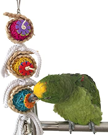 Bird Chew Toy for Parrot Macaw African Grey Budgie Parakeet Cockatiels Conure Lovebird Cockatoo Amazon Cage Toy
