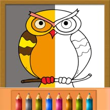 Doodle Coloring Book Color and Draw - Sketch out different shapes and have fun with colors!