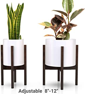 Best collapsible plant stand Reviews