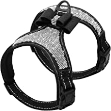 Best dog harness for wedding Reviews