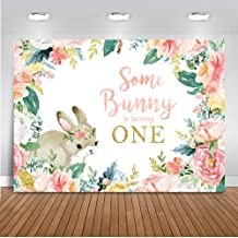 Mehofoto Some Bunny is Turning One Backdrop Spring Easter Bunny Birthday Photography Background 7x5ft Vinyl Baby Girl's 1st Birthday Party Banner Backdrops