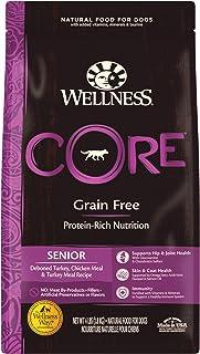 Wellness CORE Senior Dog Food 4lb