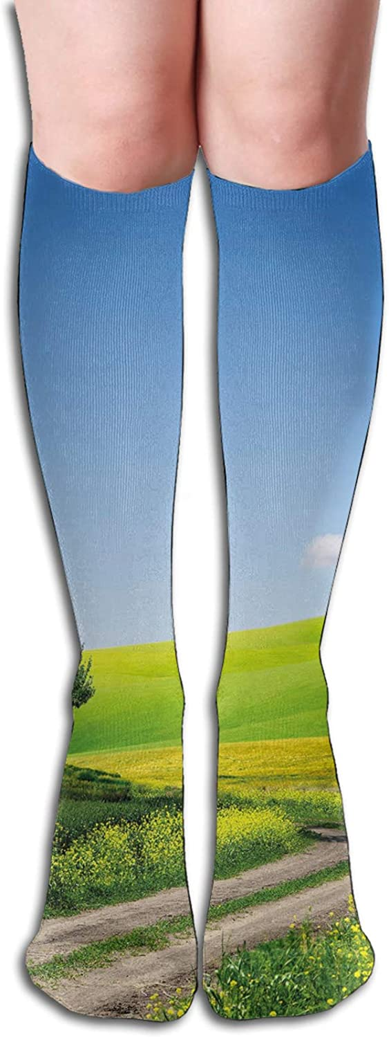 Compression High Socks-Rural Country Scenery With Floral Grass Field Tree Idyllic Landscape Best for Running,Athletic,Hiking,Travel,Flight