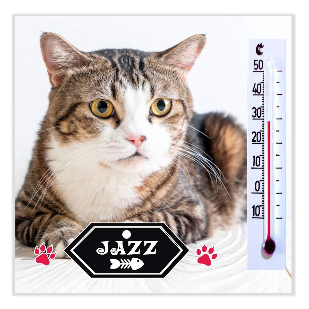 Placas- Etiquetas para Gatos Mascotas Personalizados con la Foto de Tu Gato para Regalar a Tus Amigos y Familiares - ¡Alucinarán! - Tu Gato es Único - 20 Originales Imanes con Termómetro: