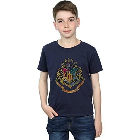 HARRY POTTER niños Hogwarts Distressed Crest Camiseta 12-13 Years Armada