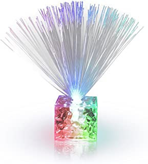 neon fiber optic