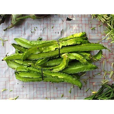 Organic Winged Bean Seeds Goa,Manila,Garden Tropical Climbing Plant Summer Veg