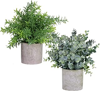 Winlyn 2 Pack Artificial Potted Plants Faux Eucalyptus & Rosemary Greenery in Pots Small Houseplants 8.3