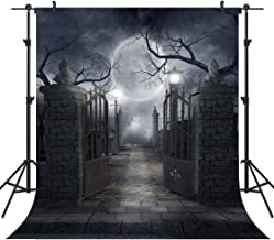 OUYIDA 10X10FT Halloween Theme Pictorial Cloth Customized Photography Backdrop Background Studio Prop TP17C