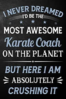 I Never Dreamed I'd Be The Most Awesome Karate Coach On The Planet But Here I Am Absolutely Crushing It: Karate Coach Jour...