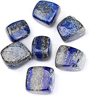 TGS Gems 1/2lb Bulk Natural Lapis Lazuli Tumbled Stones 1/2