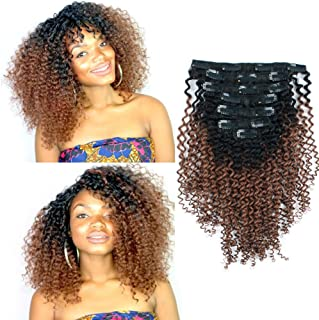 Sassina Two Tone Afro Kinky Curly Hair Extensions Clip in Human Hair 4B Natural Clip in for African American Black Women 7Pcs-120G Ombre NaturalBlackFadingtoGinger TN30 14Inch