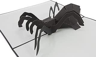 Best girlfriend scares boyfriend with spider Reviews