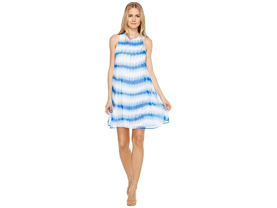 Calvin Klein Stripe Print Trapeze Dress (Regatta Multi) Women