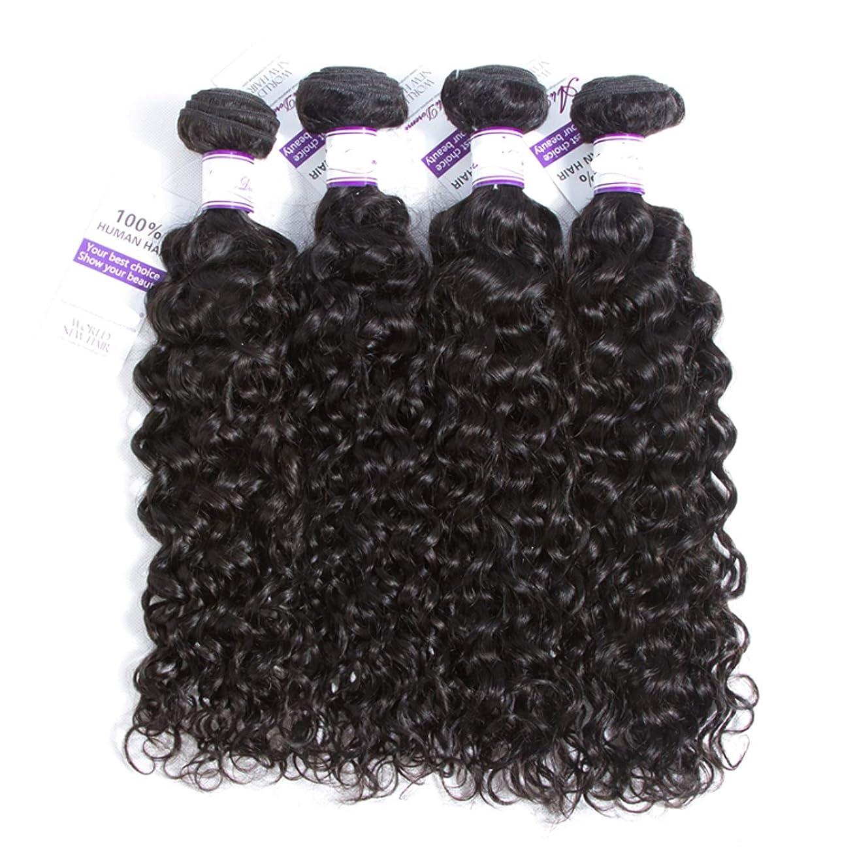 冗談でサイズレンダーマレーシアの水の波髪4個人間の髪の毛の束非レミーの毛延長ナチュラルブラック かつら (Length : 8 10 12 14)