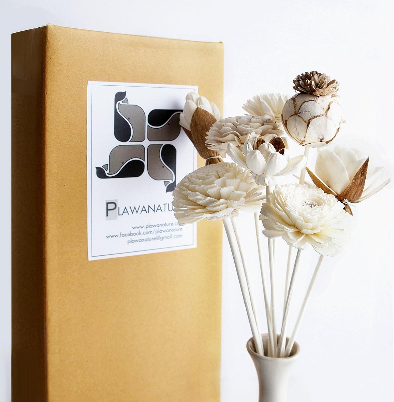 ありふれたアンティークバンエキゾチックPlawanatureのセット8ミックスSola Wood Flower with Reed Diffuser for Home Fragranceアロマオイル。