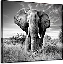 Canvas Wall Art Elephant Picture: African Animals Graphic Artwork Painting Print for Wall Decor(24''x18'')