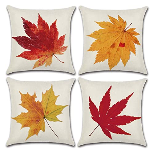 Outdoor Autumn Throw Pillow Amazoncom