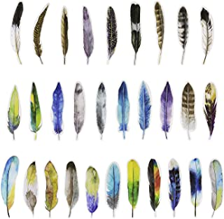 Penta Angel Vintage Feather Bookmarks 30 Pieces Different Feather Shaped Paper Bookmarks Colorful Cute Book Markers for Women Men Adult Kids Reading