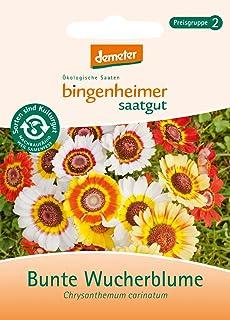 Bingenheimer Saatgut - Bunte Wucherblume - Blumen Saatgut / Samen