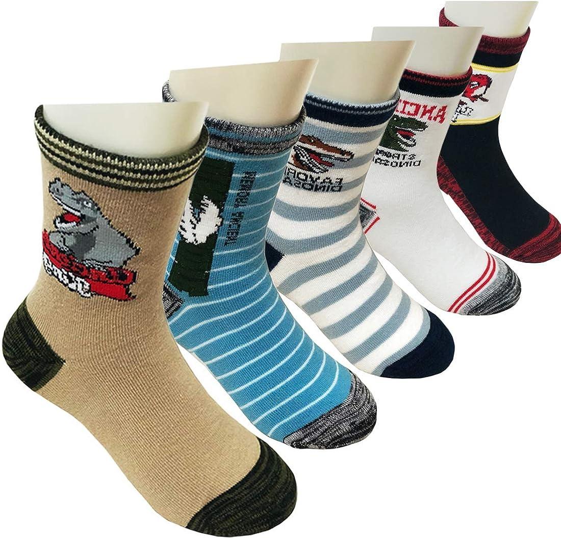 5 Pairs Boys Dinosaur Socks Fashion Colorful Breathable Cotton Crew Socks