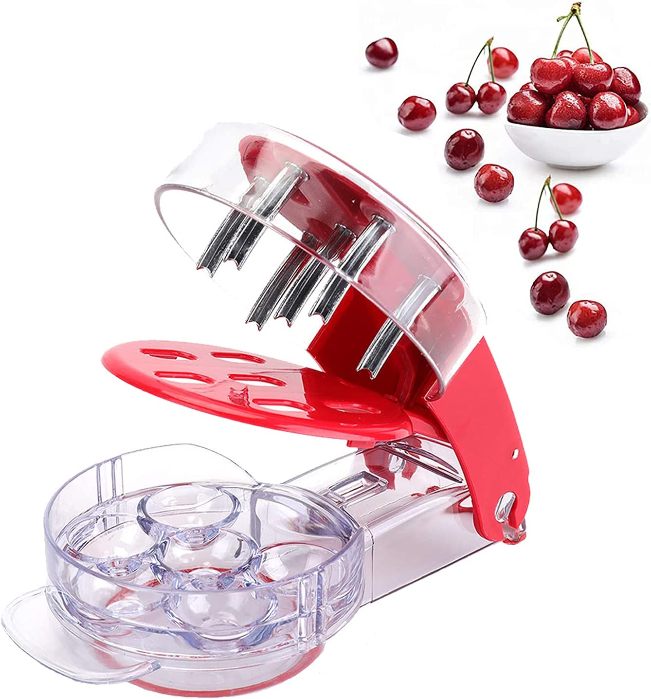 ORIJOYNA Cherry Pitter Tool - 6 Fruit Core Stoner Pit Remover (R