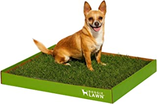 DoggieLawn Real Grass Dog Potty (Disposable)