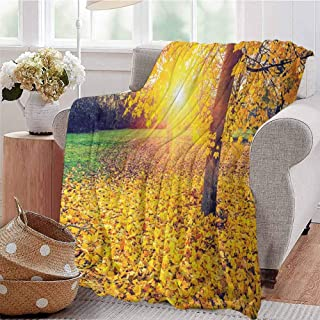 KFUTMD Boys Throw Blanket Colorful Foliage in The Autumn Park Evening View Natural Decorating Picture Print Yellow Green Dorm Bed Baby Cot Traveling Picnic W54 xL84