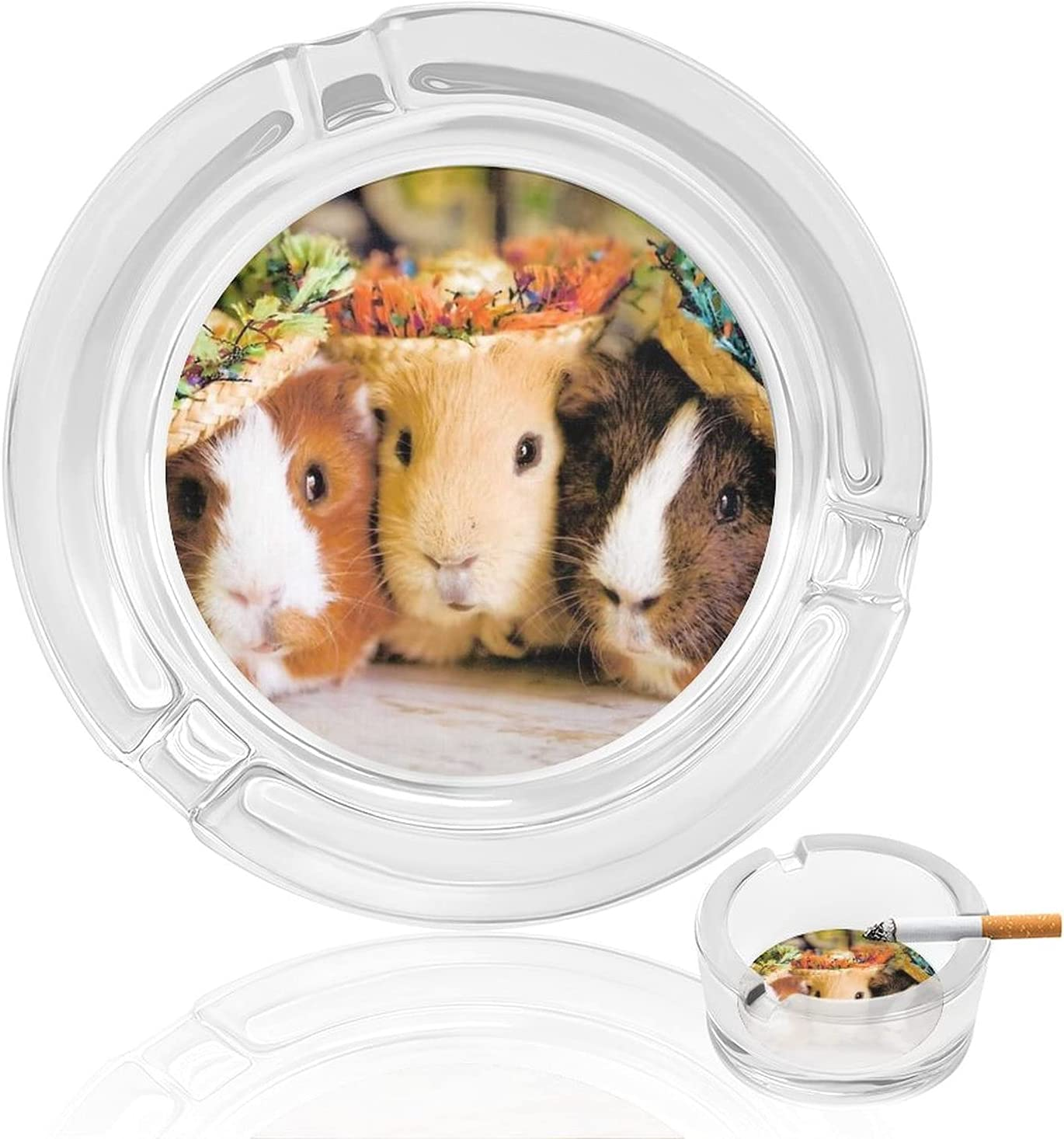 Guinea Pig With Hats Finally resale start Smoking Ashtray Ash T ...