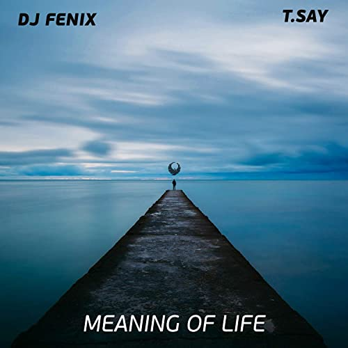 Meaning of Life (feat. T.Say)