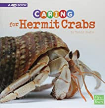 Caring for Hermit Crabs: A 4D Book (Expert Pet Care)