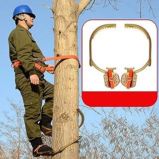 GBHJJ klättra träd artefakt, rostfritt stål klättra halkfri trädgeresjärn skogstillbehör, för jaktobservation, frukt plock...