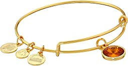 Alex and Ani - November Birthstone Charm Bangle