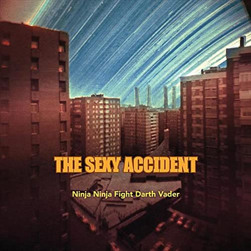 Ninja Ninja Fight Darth Vader by The Sexy Accident on Amazon ...