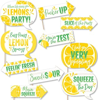 Big Dot of Happiness Funny So Fresh - Lemon - Citrus Lemonade Party Photo Booth Props Kit - 10 Piece