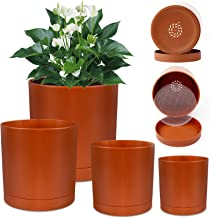 Yellow /& Caramel Orange Garden Decor  Home Decor Burgundy Hand Painted: Brown Set of 5 Fall Color Terra Cotta 6 Inch Flower Pots