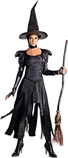 Rubie's Costume Disney's Oz The Great and Powerful Wicked Witch Dress and Hat